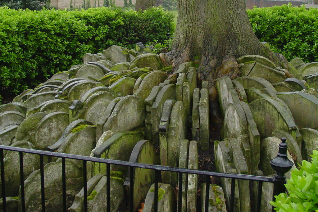 El árbol de Thomas Hardy y otras curiosas tumbas